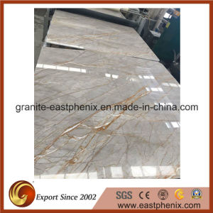 Hot Selling Picasso Gold Marble Slab pictures & photos