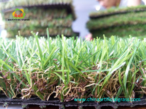 Natural Looking Artificial Grass for Garden Parks pictures & photos