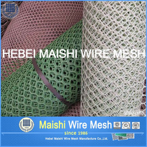 Rockshield HD Pipeline Plastic Mesh pictures & photos