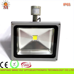 Ce/RoHS/SAA /Water Proof/ 20W LED Flood Light with Motion Sensor pictures & photos