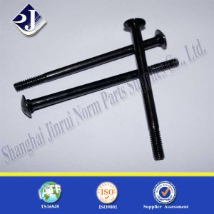 Round Head Carriage Bolt with Black pictures & photos