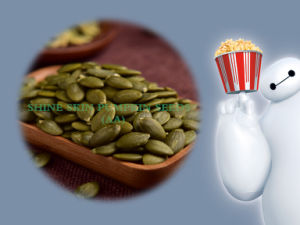 Inner Mongolia Pumpkin Seeds Kernels Grade a/AA with High Quality pictures & photos