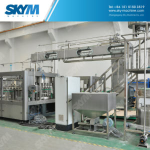 High Speed Pet Mineral Water Filling Equipment pictures & photos