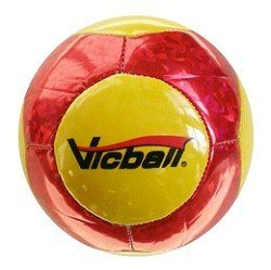 14-Panel Laser PVC Soccer Ball pictures & photos