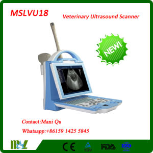 Ce Approved New Porbable Veterinary Ultrasound Scanner (MSLVU18)
