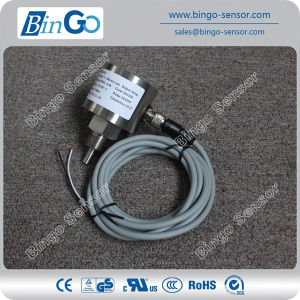 Insertion Type Electronic Flow Switch for Air, Oil, Water pictures & photos
