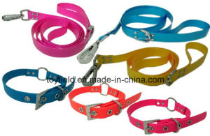 Pet Collar Cat Leash Harness Dog Pet Flea Ring pictures & photos
