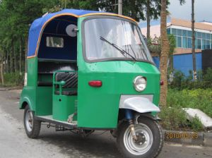 Hot Sale Electric Tricycle Rickshaw 1250W (PC-028B) pictures & photos