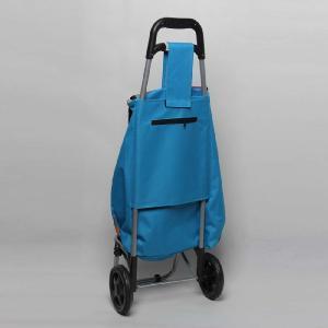 Folding Shopping Trolley/Portable Shopping Cart pictures & photos