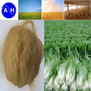 Plant Source Amino Acids with Chloride Organic Fertilizer pictures & photos