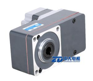 gear ratio5~200K, 24/36/48V 110/220V DC gear motor, L type pictures & photos