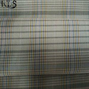 100% Cotton Poplin Yarn Dyed Fabric Rls32-2po pictures & photos