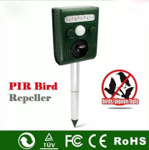 Solar Energy Wild Bird Repellent pictures & photos