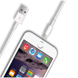 Customized Fast Travel USB Cable Mobile Phone Charger for iPhone pictures & photos