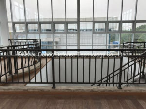 New Style Customized Black Balcony Fence pictures & photos