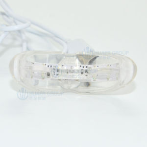 All Distributor Wanted Waterproof Mini LED Teeth Whitening Light pictures & photos