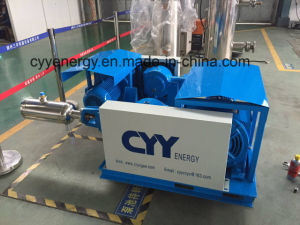 Industrial Gas Filling Pump for Cryogenic Liquid Oxygen Nitrogen Argon LNG pictures & photos