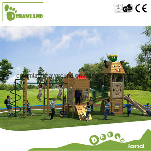 Plastic Children Indoor/Outdoor Wooden Playground pictures & photos