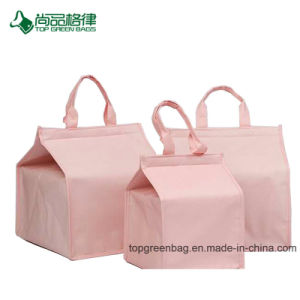 Cake Insulated Bag Custom High - Grade Storage Bag of Non Woven Cold Storage Bag pictures & photos