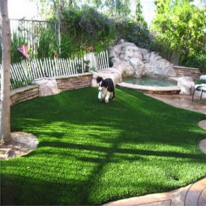 Newest Artificial Grass with W Shape pictures & photos