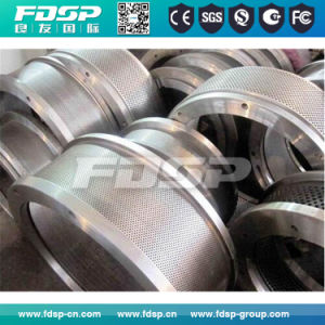 Professional Spare Part Stainless Steel Ring Die Pellet Mill Die pictures & photos