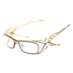 Glasses Frames Decorative Gold Rose Gold Black PVD Coating Machine pictures & photos