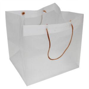 Shopping Bag (HF-628) pictures & photos