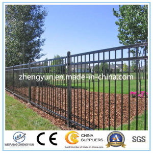 High Quality Cheap Coating Metal Garden Fence pictures & photos