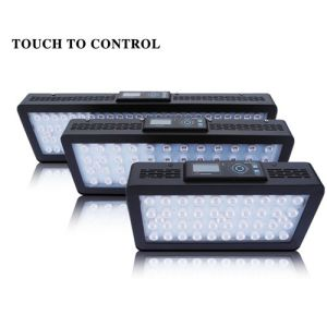 Remote Aquarium LED Lighting/LED Aquarium Light for Fish Tank