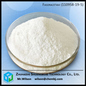 New Arrival Fasoracetam Pharmaceutical Raw Materials 110958-19-5
