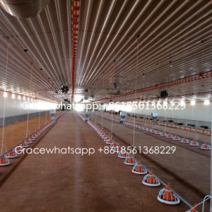 Full Set Broiler Poultry Farm Machinery &Equipment with Matching Prefab House Construction pictures & photos