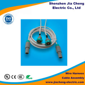 High Quality Engine Cable Harness for Automobile Application pictures & photos