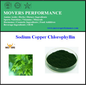 Top Quality Nature Hot Selling Sodium Copper Chlorophyllin pictures & photos
