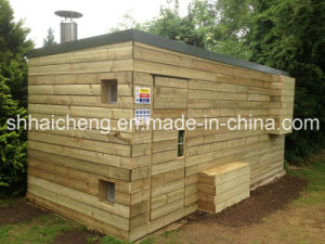 40ft Site Drying Room Containers with Wooden Cladding Panel (shs-fp-special008) pictures & photos