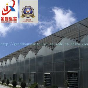 PC/Glass/Film Greenhouse with High Quality and Favorable Price pictures & photos