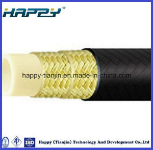 High Pressure Nylon Resin Hose pictures & photos