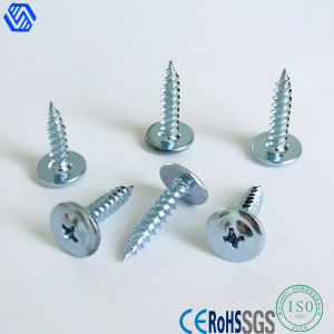 Wholesale Self Tapping Screw pictures & photos