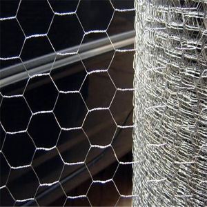 Iron Material Hexagonal Wire Netting pictures & photos