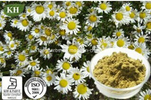 Cosmetic Ingredients Chamomile Extract Apigenin 0.3%- 98% by HPLC pictures & photos