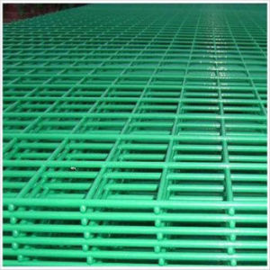 Green PVC Coated Welded Wire Mesh Panel pictures & photos