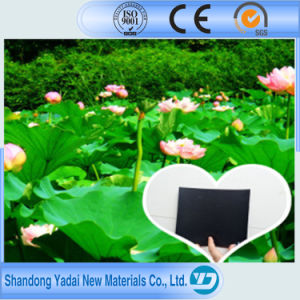 Black HDPE Plastic Sheet LDPE Geomembrane/Geomembrane Liner and Pond Lining Sheet pictures & photos