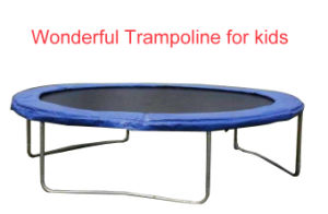 China Export Bungee Bungee Trampoline for Kids pictures & photos