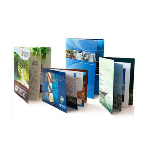 Full Color Busniess Brochure Printing (jhy-850) pictures & photos