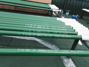 Factory Supply High Quality Rod Pump pictures & photos