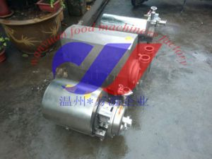 Various Types of Stainless Steel Pumps pictures & photos