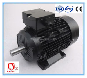 Ie2 Series High Efficiency Three Phase Electric Motor pictures & photos