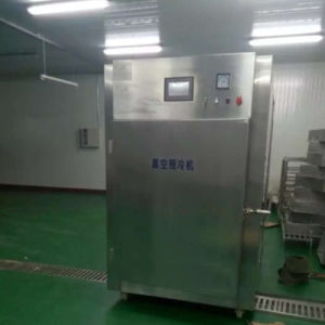Hot Food Fast Cooling Machine in a Short Time pictures & photos