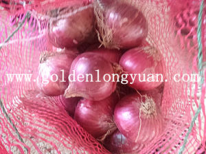 2016 Hot Sale High Quality Fresh Red Onion pictures & photos