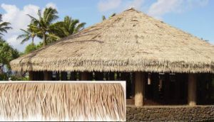 Simulation Thatch, Palm Leaf Thatch, Emulation Palm Leaf Thatch, Plastic Palm Thatch Qwi-St006 pictures & photos