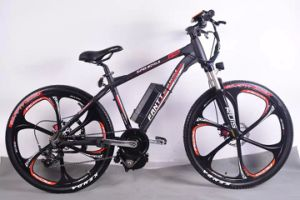 "Cheapest 21 Speed MTB Bicycle Bike 26"" Mountain Bike (OKM-883)"